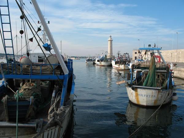 Bonifica del porto di Molfetta